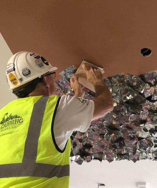 variegated leaf installation - university of michigan business administration dorm