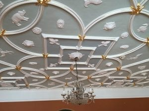 AIER Ceiling